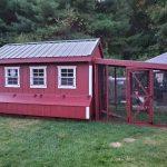 dorothys chicken coop