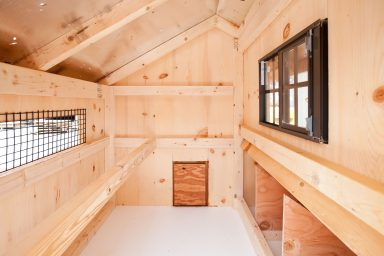 deluxe chicken coops Interior of Q34T Q44T 1