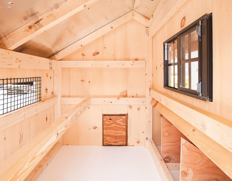 deluxe chicken coops Interior of Q34T Q44T 2