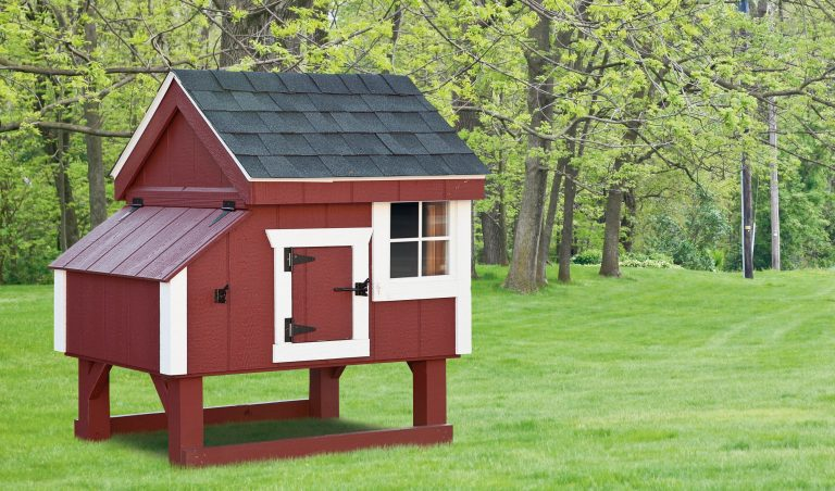 pictures of chicken coops 3x3