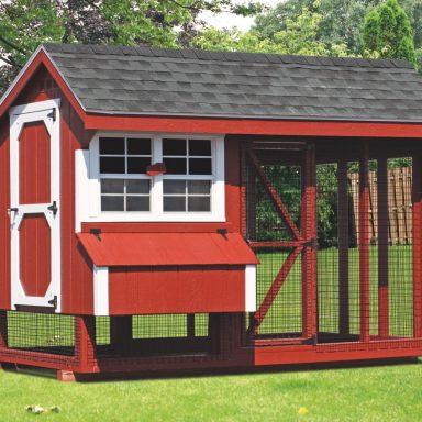 6x10 combination backyard chicken coop