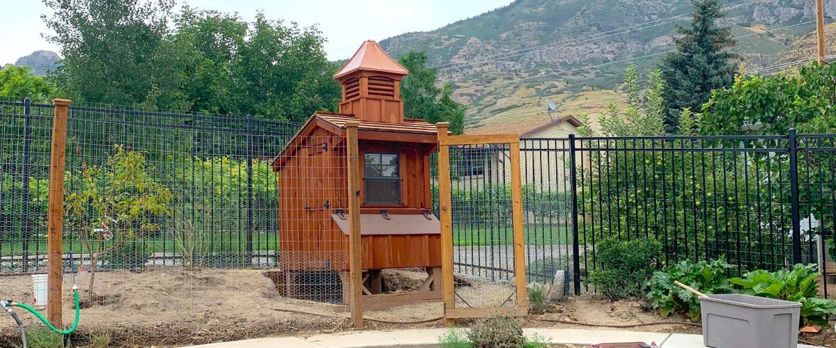 chicken coop in utah for sale