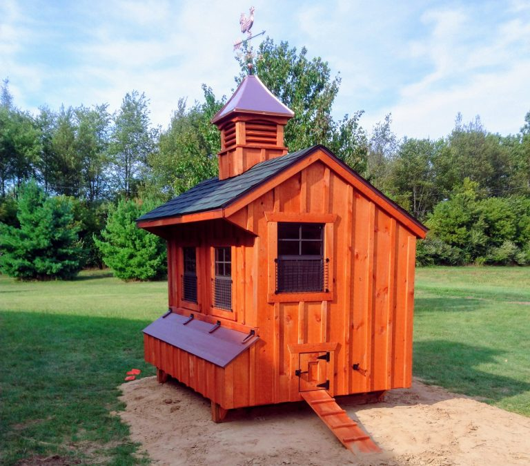 chicken-coop-stories-in-michigan