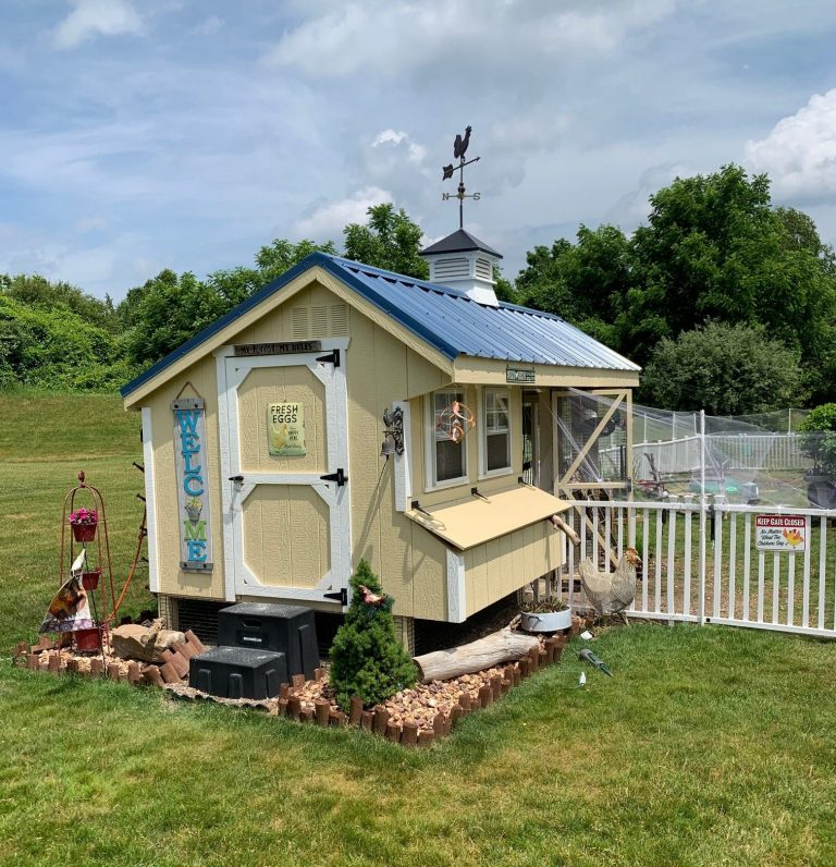 combination chicken coop with run