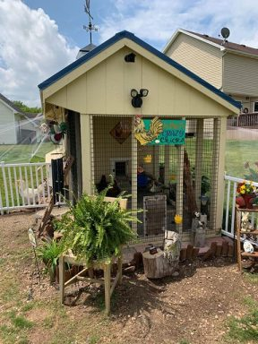 amys chicken coop with run 1