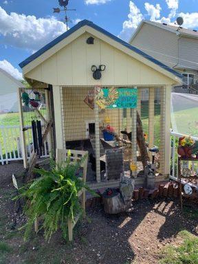 chicken coop run 1