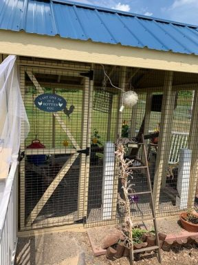 chicken coop with large run