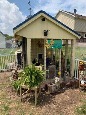chicken coop with run 3