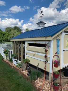 chicken coop with run 12