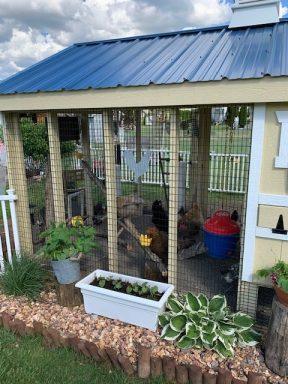 chicken coop with run 13