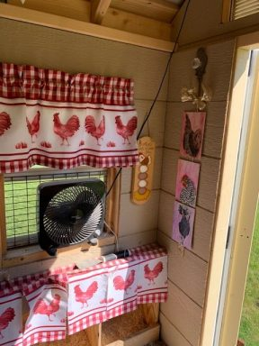 chicken coop with run 22