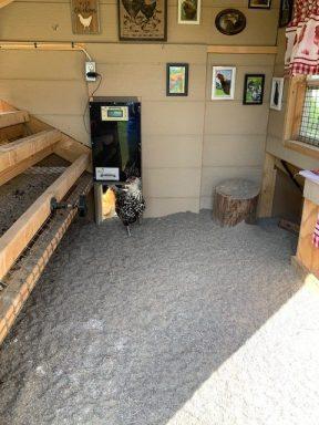 chicken coop with run and auto door