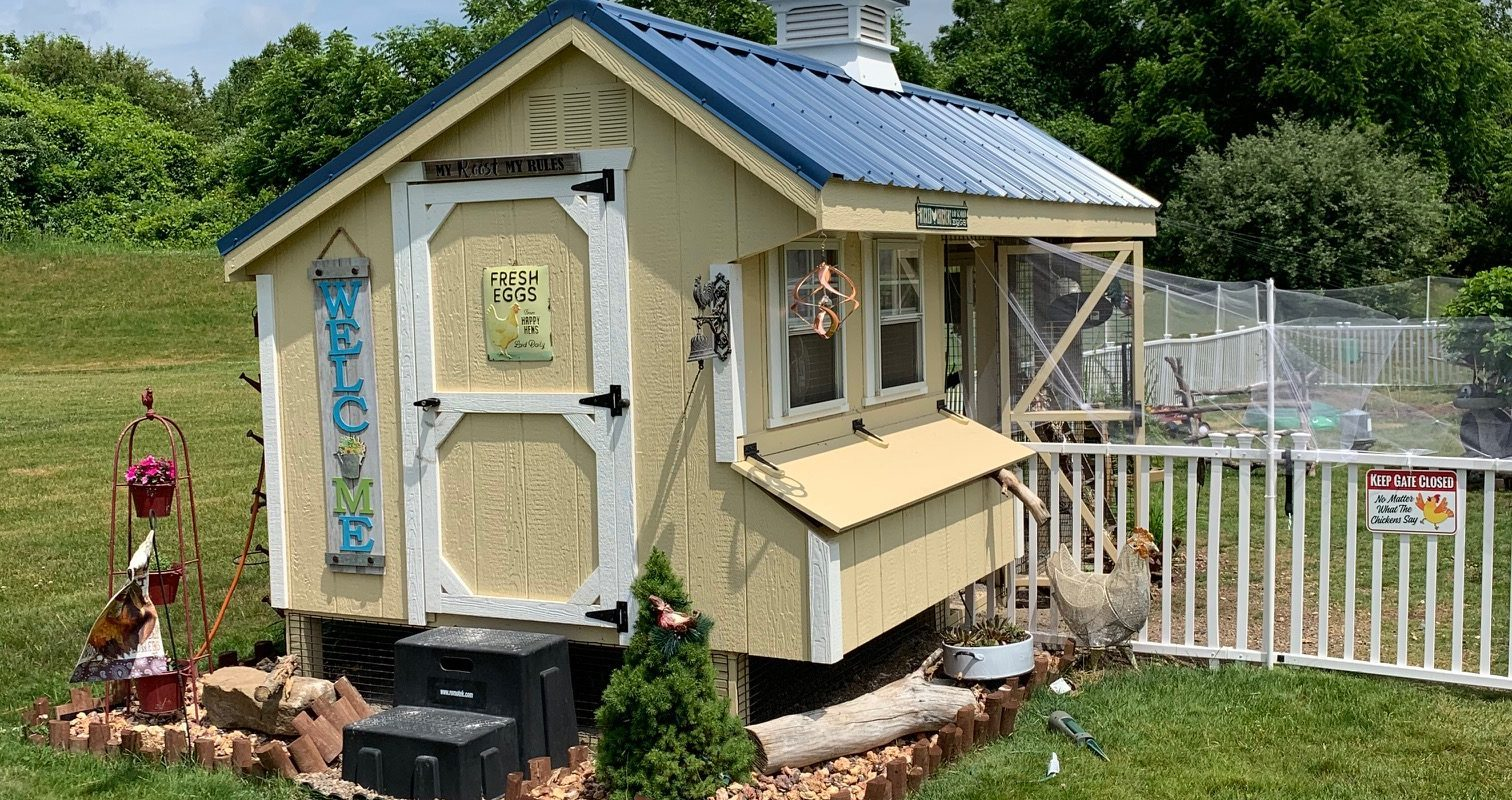 combination chicken coop with run 1