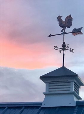 weathervane for a chicken coop