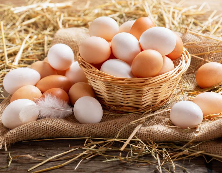 clean chicken coop eggs