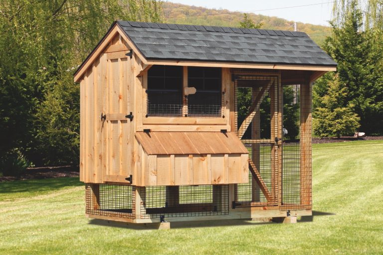 chicken coop and run 4x8 Combination