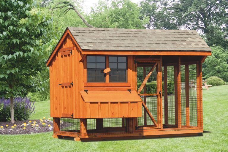 chicken coop and run 6x10 Combination