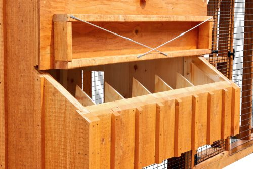 chicken coop and run BB Q612C 2