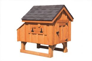 a frame chicken coop Cedar Stain A33 Back View