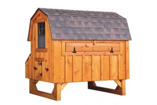 barn style chicken coops Cedar Stain D46 Back View