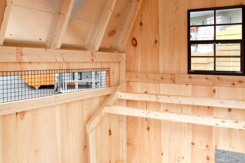 barn style chicken coops BB D66 9
