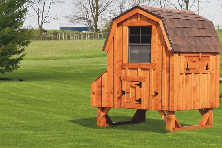 """barn style chicken coops 4x4 Dutch With board and batten siding 78"""" high 14"""" off ground 4 nesting boxes Cedar stain Walnut brown shingles"""