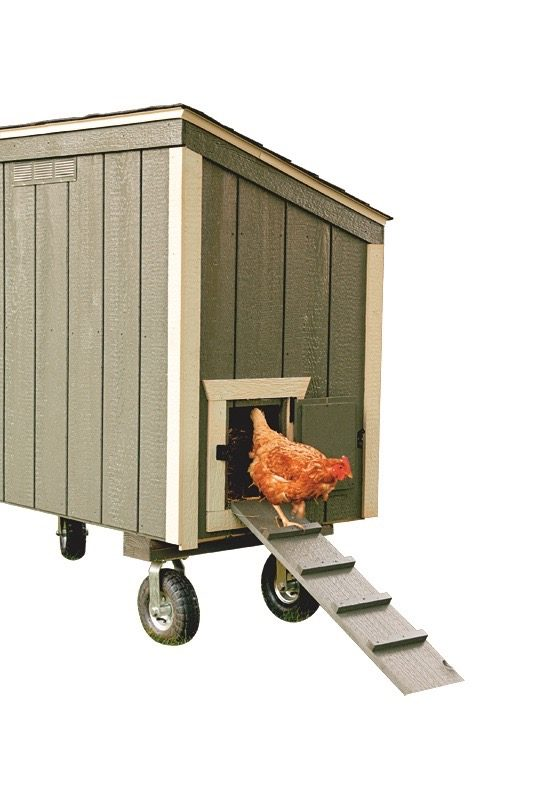 small chicken coops Avocado L35 With Optional Wheels and Handle Back View 1