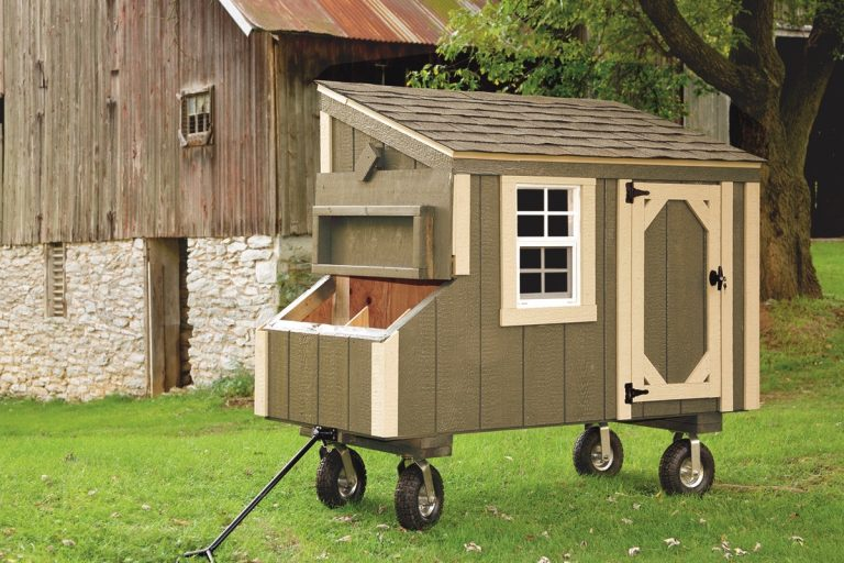 small chicken coops Avocado L35 With Optional Wheels and Handle Front View