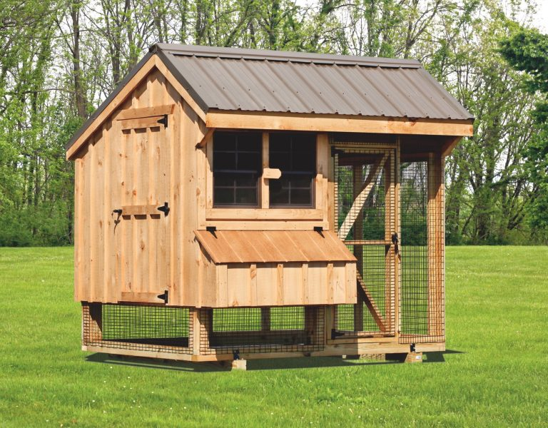 backyard chicken coops 6x8 Combination